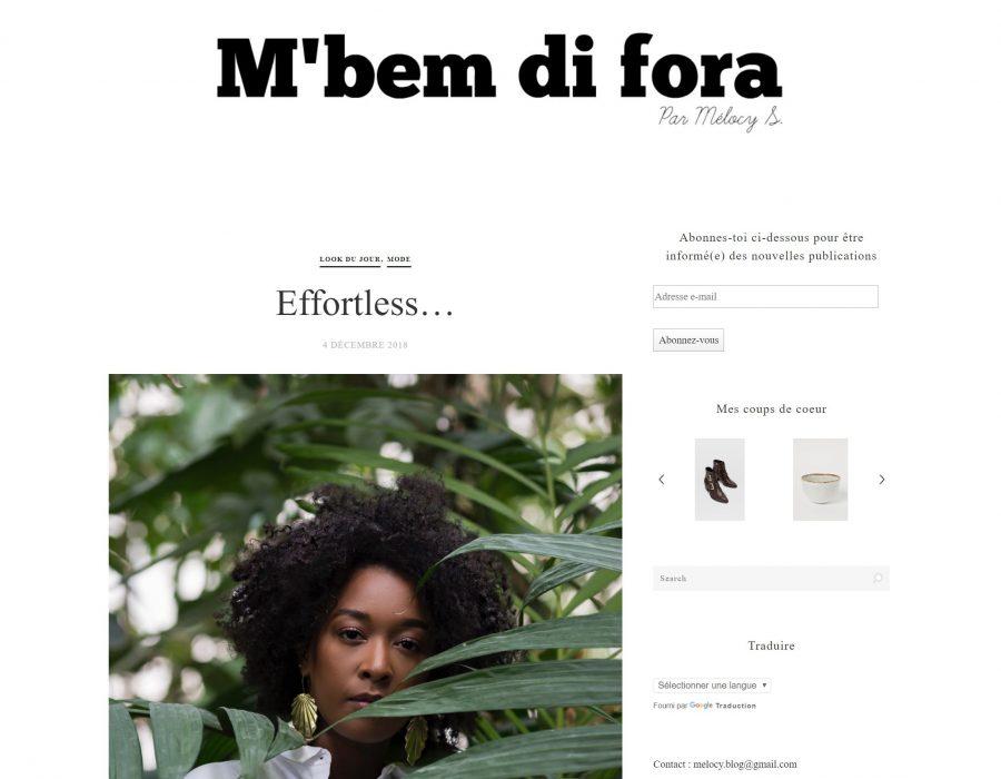 Article blog mbemdifora